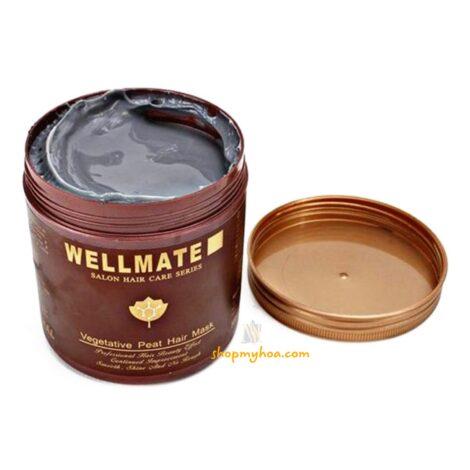 ủ-tóc-wellmate-ý
